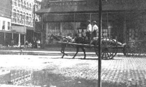 G-1771FF6.1-11 Wagon traveling past E. S. Levy & Co.