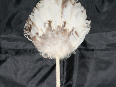 Turkey Tail Fan