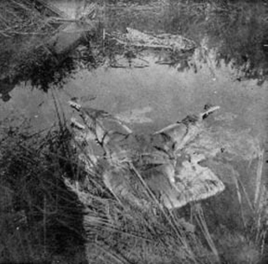 G-1771FF1.1-10 Skeletal remains floating in pool of water