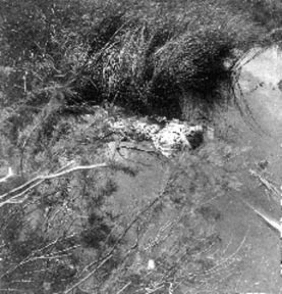 G-1771FF1.1-14 Skeletal remains floating in pool of water