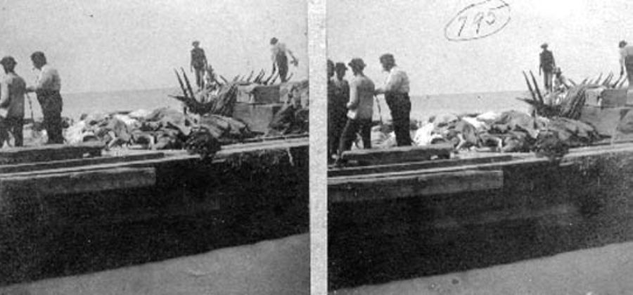 G-1771FF1.2-14 Barge in Gulf, Casting DEAD in to the SEA.  700 dead were buried at sea the 2nd day after the storm.