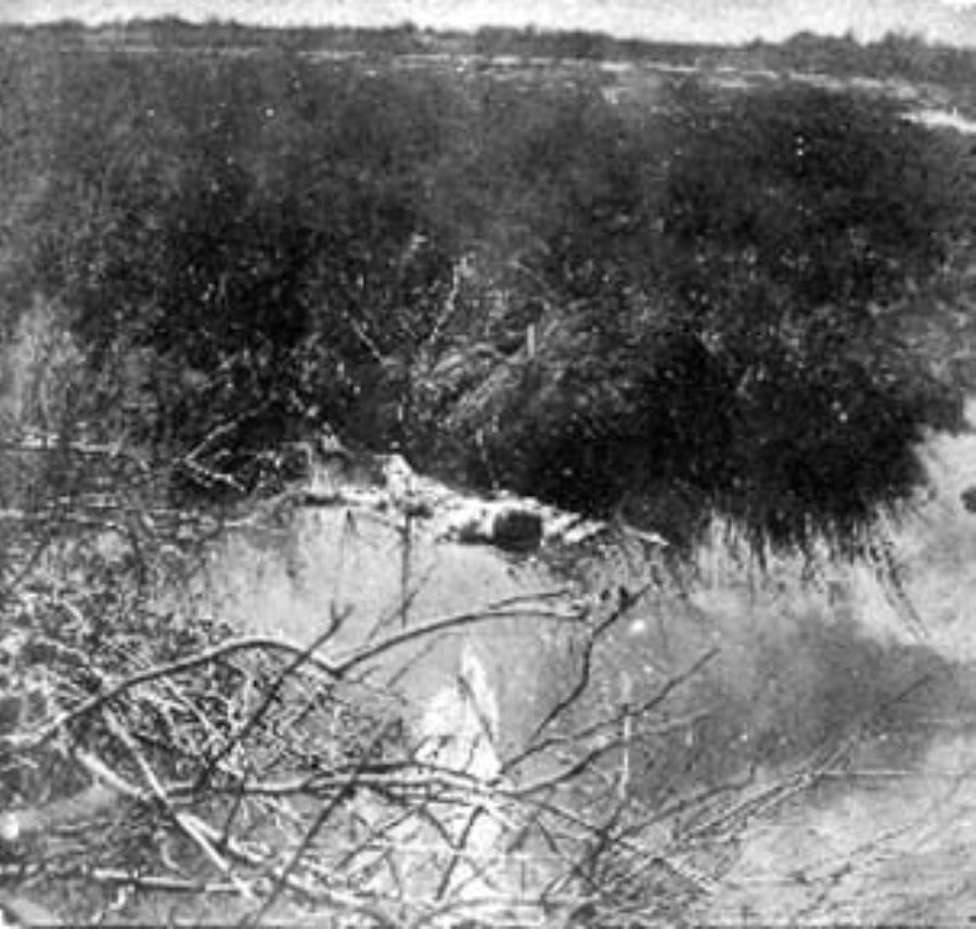 G-1771FF1.4-2 Skeletal remains lying in water