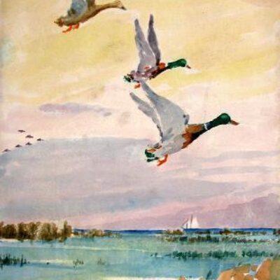 Wings In Watercolor: 33 Works by Boyer Gonzales, Sr. (1864 – 1934)